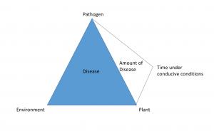 Efficacy vs management trials